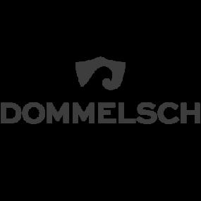 logo_dommelsch@2x