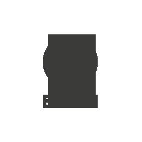 Logo_Ergon